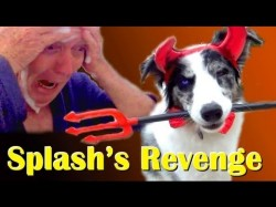 Halloween Three – Splash's Revenge