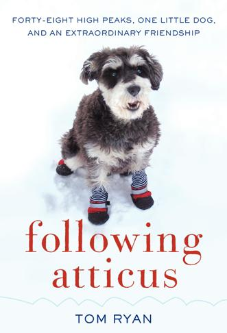Giveaway: Following Atticus