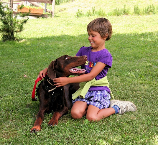PA Bill Would Provide Tax Credit to Pet Adopters