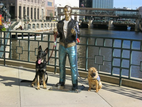 Dog Friendly Sightseeing in Milwaukee