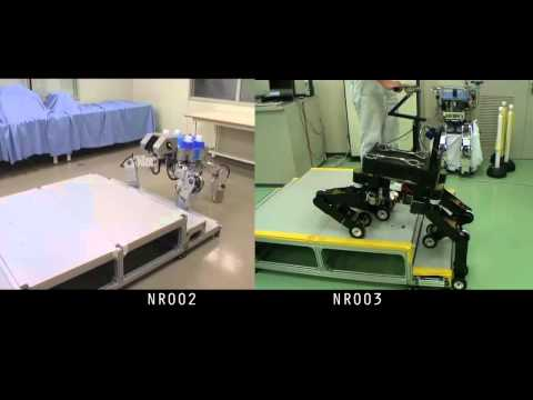 Japan's NSK Unleashes Robotic Guide Dog