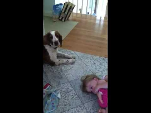 Why We Buy Dogs For Our Kids