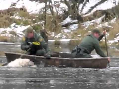 Ice Rescue Captured on Camera