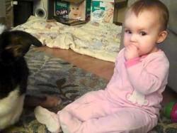 Dog and Baby Sharing Cheerios