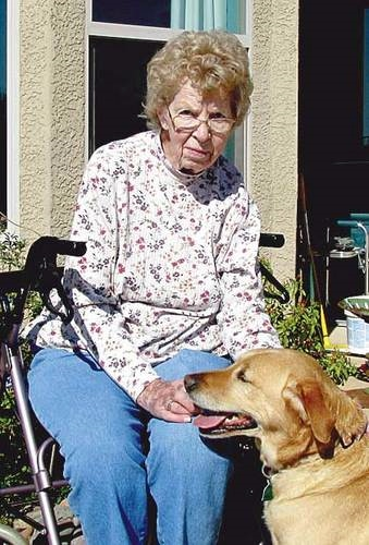 Dog Helps Elderly Woman Survive Night of Terror