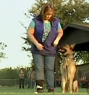 Special Report: K-9 Security Dogs at Home
