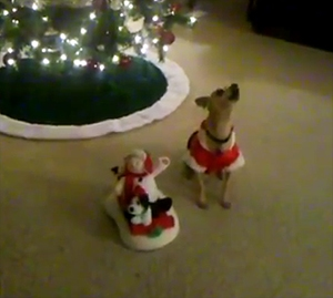 Chihuahua Christmas Caroler