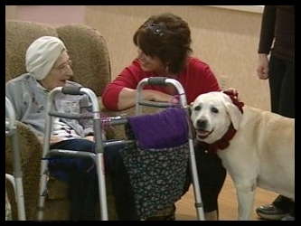 Death Row Dog Adopted by Nursing Home