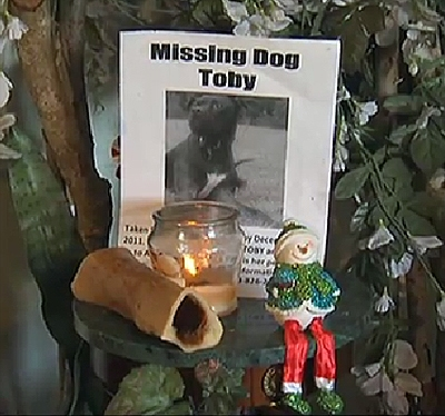 Family Mourns Murdered Service Dog: Reward Offered