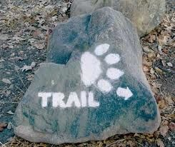 trail marker with a dog paw image sprayed on rock