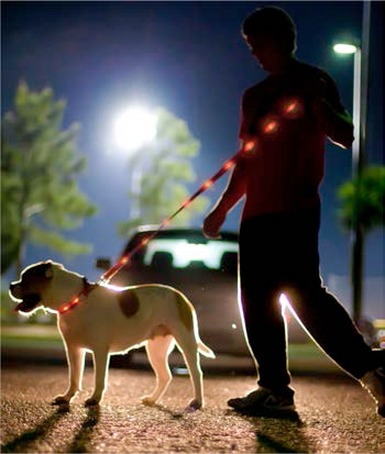 Giveaway: Dog-E-Glow LED Safety Collar