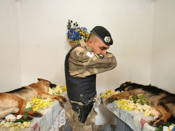 Tribute Paid to Police Dogs Killed in Action