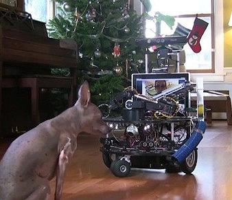 Microsoft Engineer Invents Robotic Petsitter