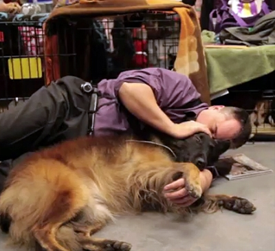 Westminster Kennel Club Dog Show: Petting Challenge