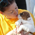 150 Dogs Rescued from North Carolina Puppy Mill