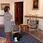 First Lady and First Dog Surprise Tourists at the White House