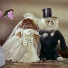 Vintage Video: Freaky Pekes in Wedding Outfits