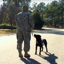 "Army Ranger: ""My dog saved my life."""