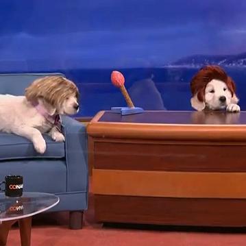 Puppy Conan on TBS