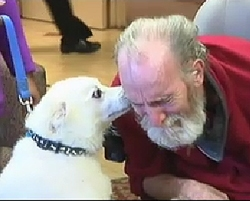 Best Friends Reunited by Act of Kindness