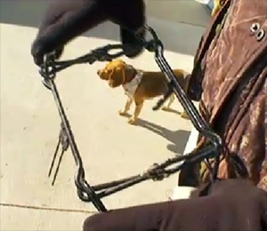 Man Uses CPR To Save Dog Caught in Trap