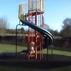 Dog Meets Slide