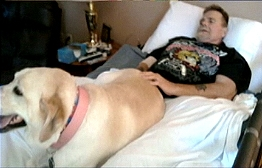 Dying Man's Final Wish: One Last Meeting With Dog