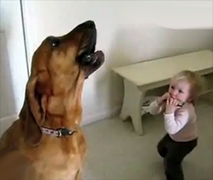 Toddler And Hound Dog Play The Blues