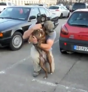 Happy Dog Welcomes Soldier Home