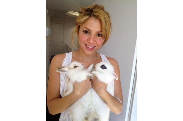 Photo of Shakira & her Rabbit La Hembrita & El Machito