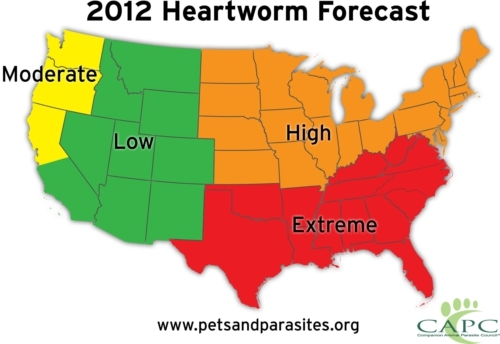 Higher-than-Average Heartworm Risk Predicted Nationwide