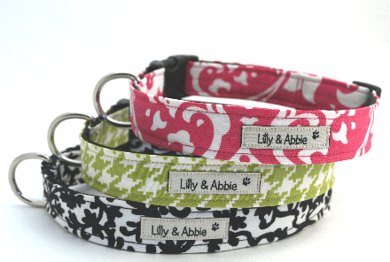 Giveaway: Lilly & Abbie Custom Collars & Leash Set