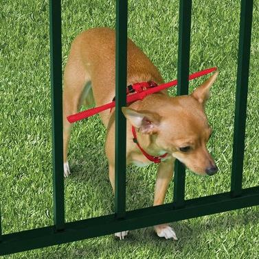 The Escape Preventing Dog Harness