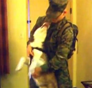 U.S. Marine Surprises His Siberian Husky in Hotel Room Reunion
