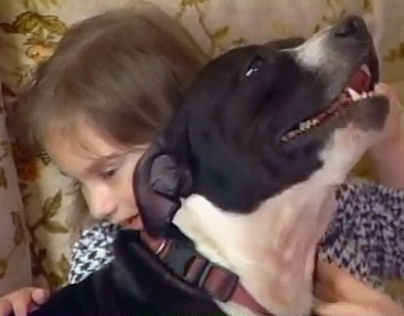 Blind Girl's Stolen Dog Returned