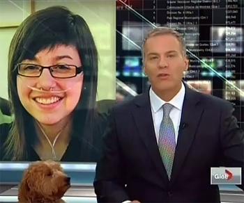 Dog Makes Impromptu Appearance on Canadian Newscast