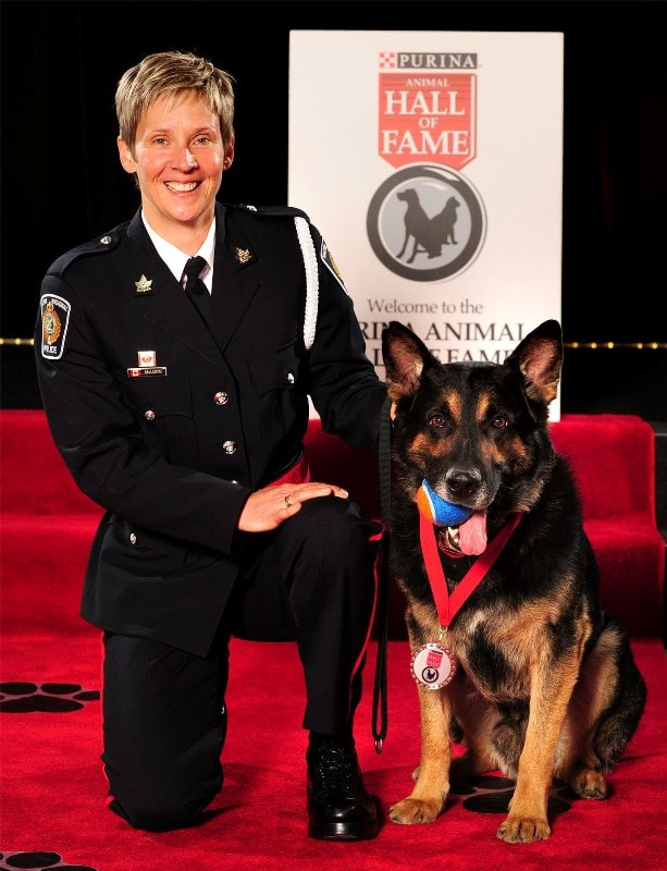 Heroic Pets Honored: Animals' Sixth Sense Saves Lives