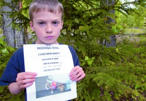 Stolen Pet Alert: Family Pleads for Return of Autistic Child's Service Dog