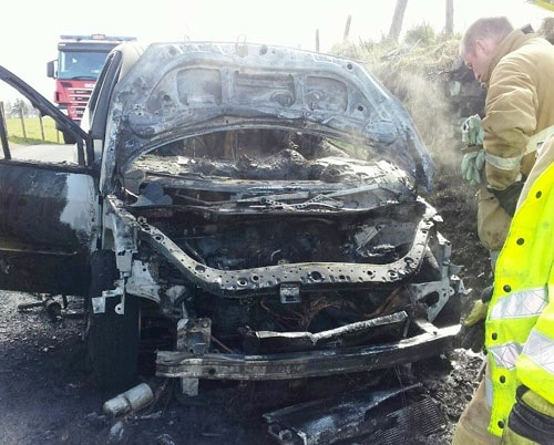 Good Samaritan Rescues Dog from Burning Car