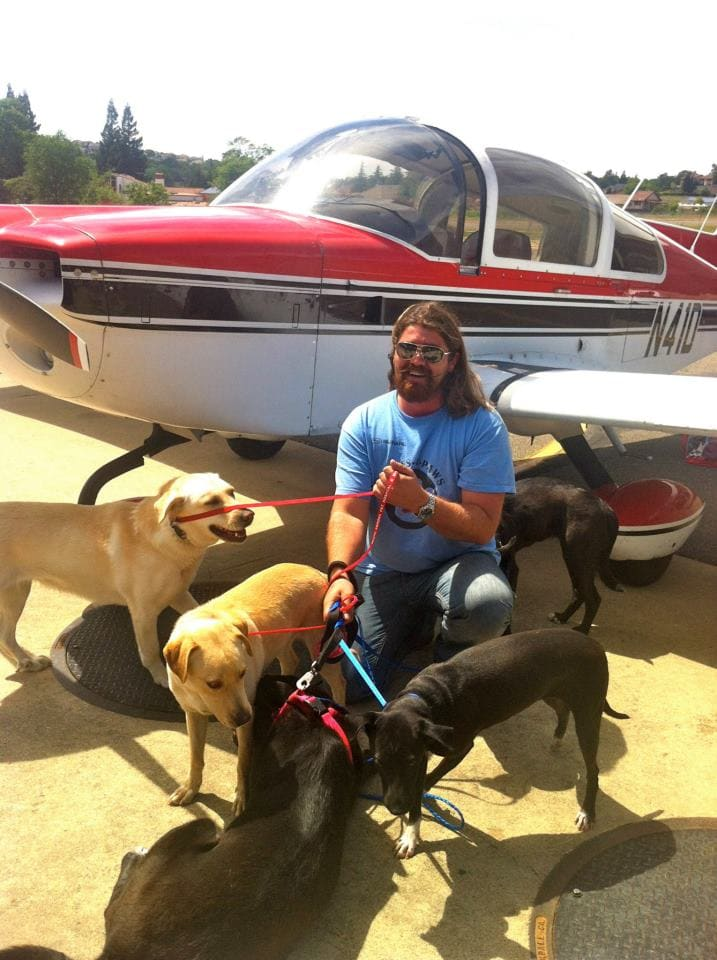 Death Row Dog Pilots Plane And Pack Of Peers From Kill Shelter To Freedom