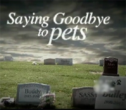 Owners Find Closure With Funerals For Pets