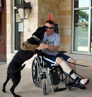 Tail Wagging Reunion for Soldier and the Dog He Saved