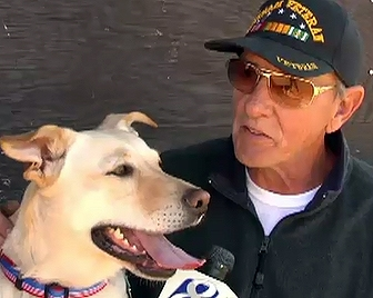 Rescued Dog Returns Favor, Saves Owner's Life