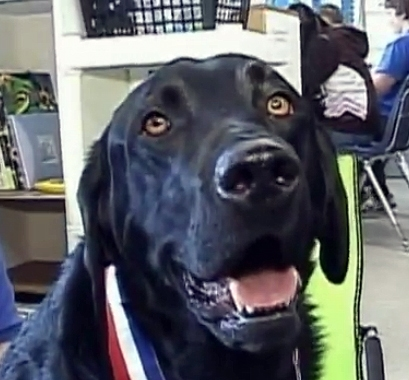 Special Needs Students Get a Boost from Former Shelter Dog