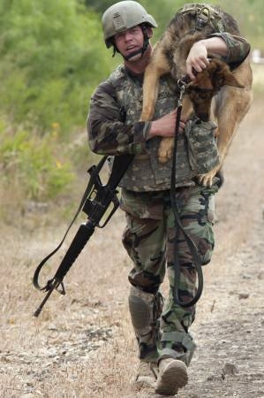 2012 DOD Military Working Dog Competition (VIDEO)