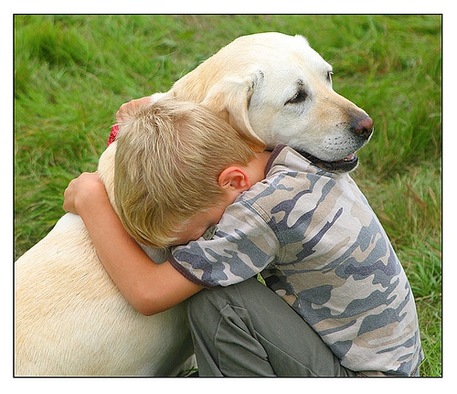 dog the man best friend We hope you find out now why dog's are man's best friend originally answered: why are dogs called man's best friend because they love unconditionally.