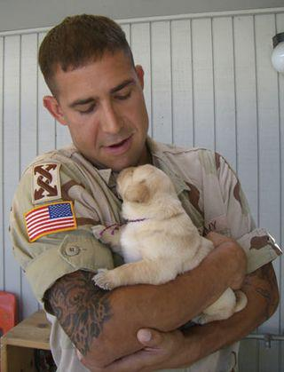 Help a Soldier Get a Service Dog