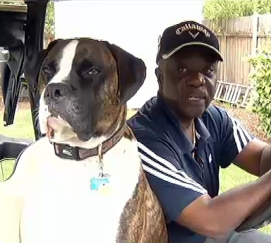 Teens Threaten Service Dog, Owner Runs Them Over with Golf Cart
