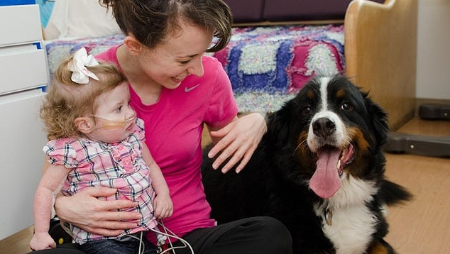 Pet Therapy: Hospitals Allow Patients' Own Dogs to Visit