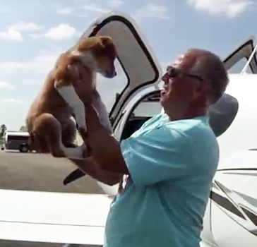 Florida Pilot Rescues 1,000th Animal